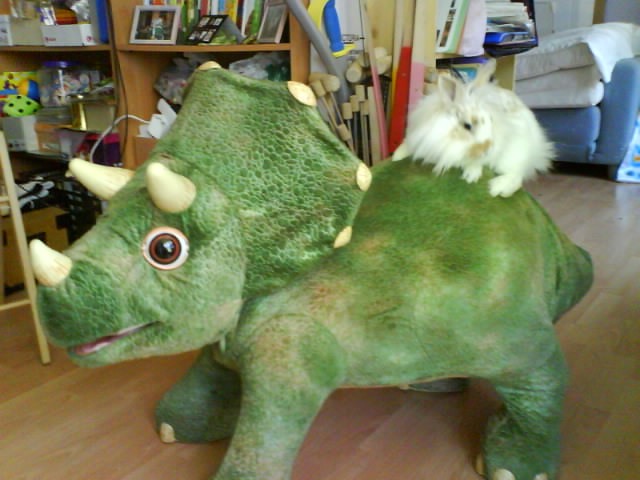 Chouquette la lapine au pays des dinosaures dans humour gouteranniversairechampignysurmarne